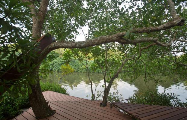 фотографии Tamarind Hill изображение №8