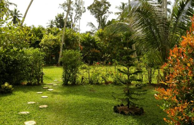 фотографии Dalmanuta Gardens изображение №8