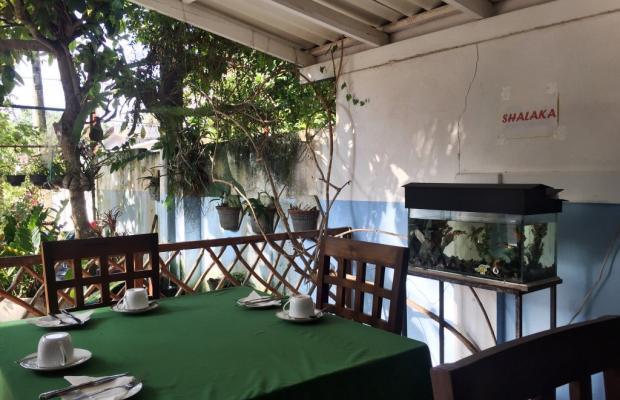 фото Sunny Mood Guest House изображение №2