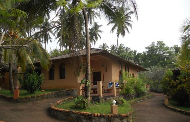 фотографии отеля Eva Lanka изображение №15