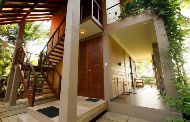 фотографии отеля Palm Paradise Cabanas изображение №3