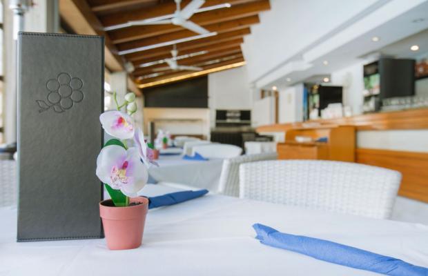 фото отеля Aparthotel Flora изображение №21
