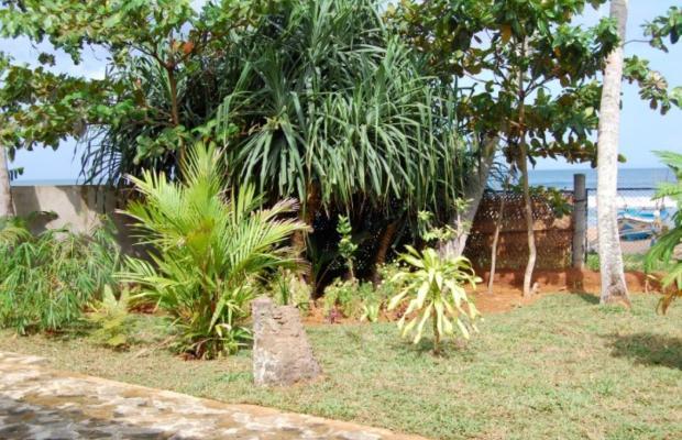 фото Lumi House изображение №6