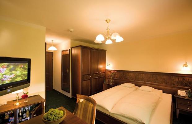 фото Alpine Hotel Eagles Inn (ex. Alpine Well & Fit Hotel Eagles Astoria; Batzenhausl) изображение №14