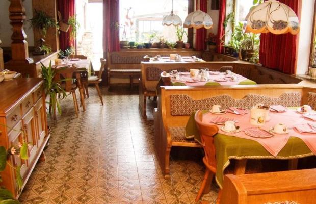 фотографии Alpina Hotel (ex. Alpina Pension) изображение №16