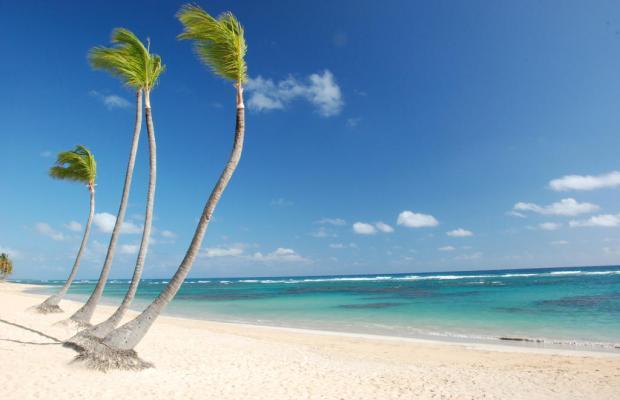 фотографии Grand Sirenis Punta Cana Resort Casino & Aquagames (ex. Sirenis Tropical/Cocota) изображение №12