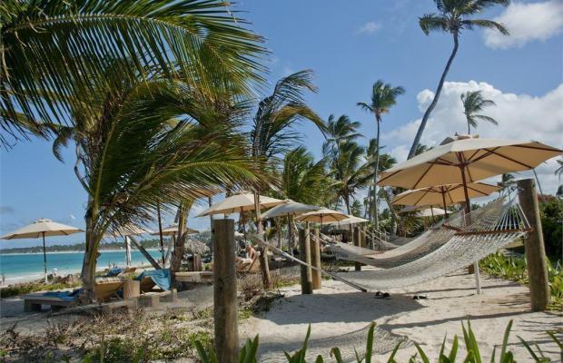 фотографии VIK Hotel Cayena Beach изображение №8