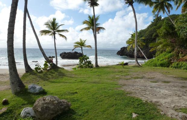 фотографии отеля La Tambora Beach Resort изображение №3