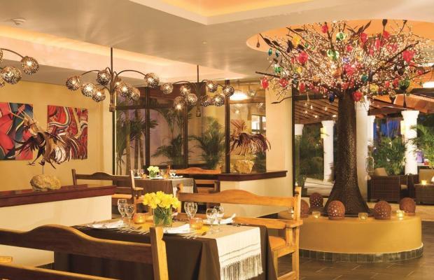 фотографии отеля Dreams Palm Beach Punta Cana изображение №27