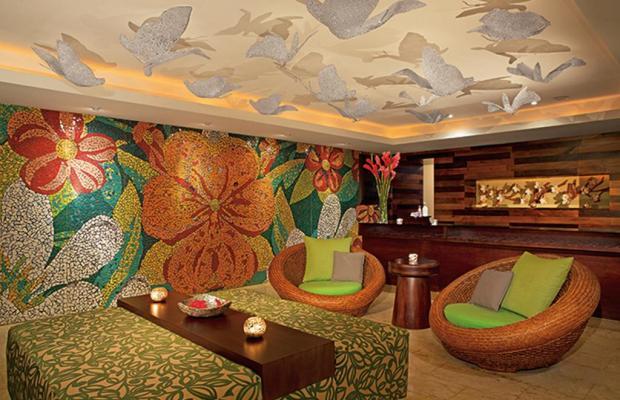 фотографии отеля Dreams Palm Beach Punta Cana изображение №23