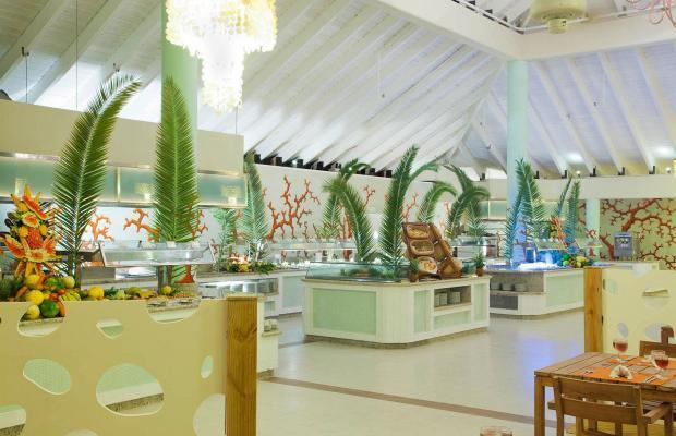 фотографии отеля Grand Palladium Punta Cana Resort & Spa изображение №15