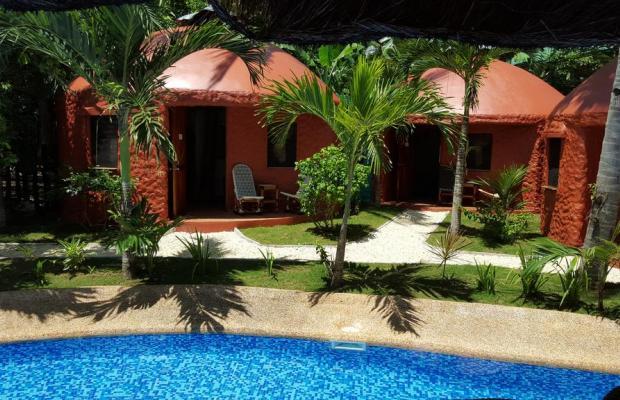 фотографии отеля Panglao Chocolate Hills Resort изображение №27