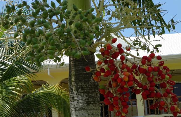 фото Bohol Sunside Resort изображение №54
