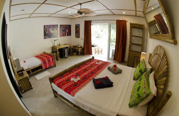 фотографии отеля Dolphin House Resort Moalboal изображение №35