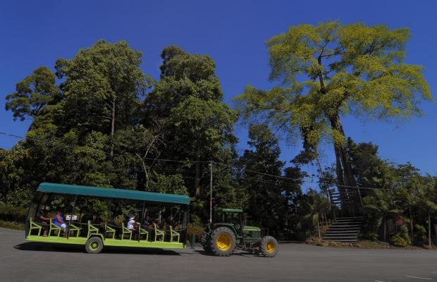 фото отеля Borneo Tropical Rainforest изображение №17