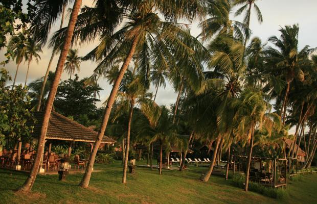 фотографии отеля Bon Ton Resort изображение №19