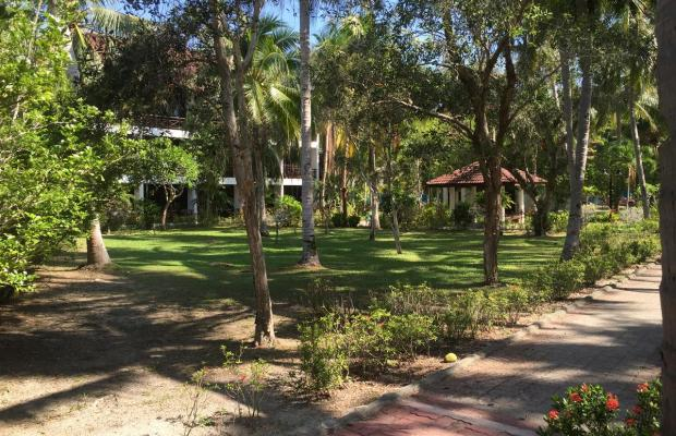 фотографии Federal Villa Beach Resort (ex. Federal Lodge) изображение №36