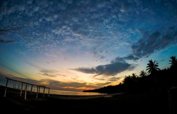 фотографии Palm Beach Resort & SPA изображение №24