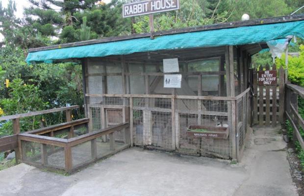 фото отеля Kinabalu Pine Resort изображение №5
