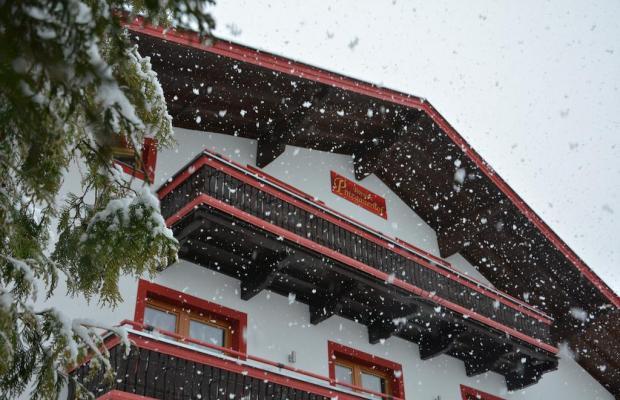 фото отеля Pension Pinzgauerhof изображение №21