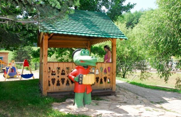 фото Сибирь (Siberia) изображение №10