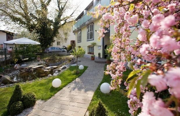 фотографии Hotel Rosenvilla изображение №24