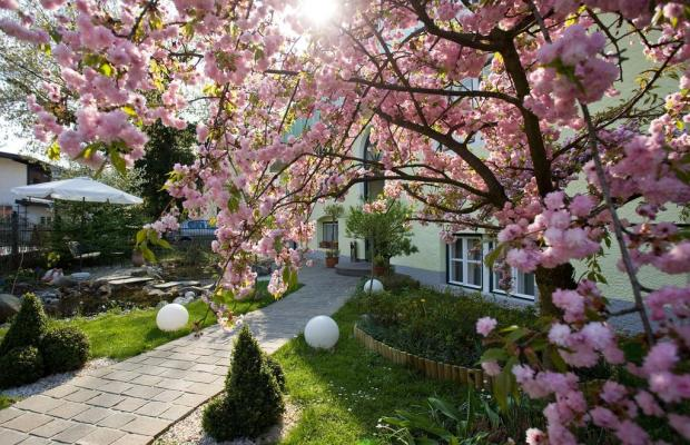 фото отеля Hotel Rosenvilla изображение №13