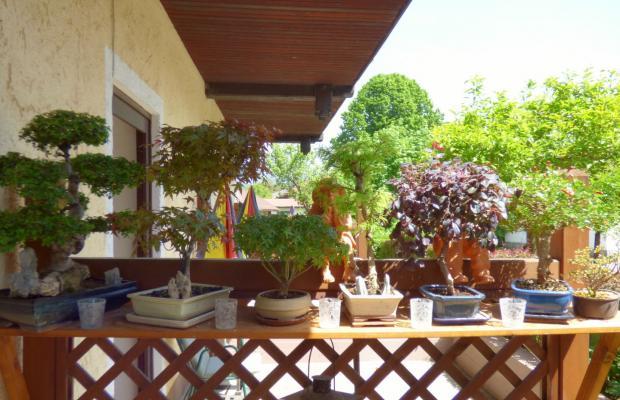 фото Villa Dorothy изображение №10