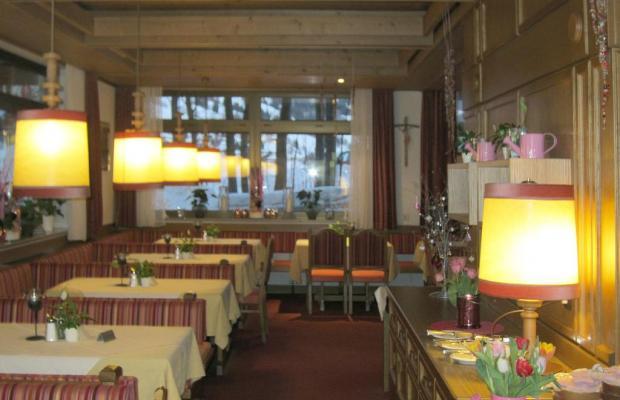 фотографии отеля Pension Schattberg изображение №3