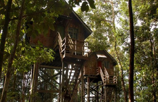 фото Permai Rainforest Resort изображение №6