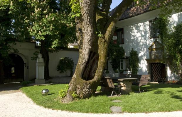 фотографии Schloss Leonstain изображение №8