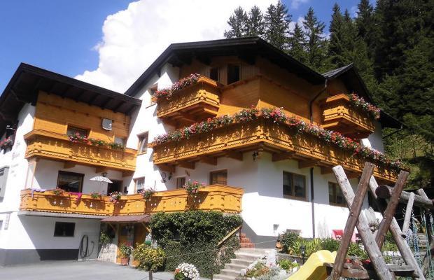 фото Haus Waldheim изображение №6