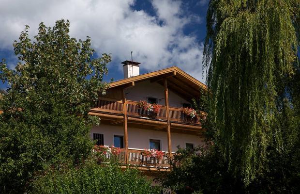 фотографии Albergo Bellaria изображение №12