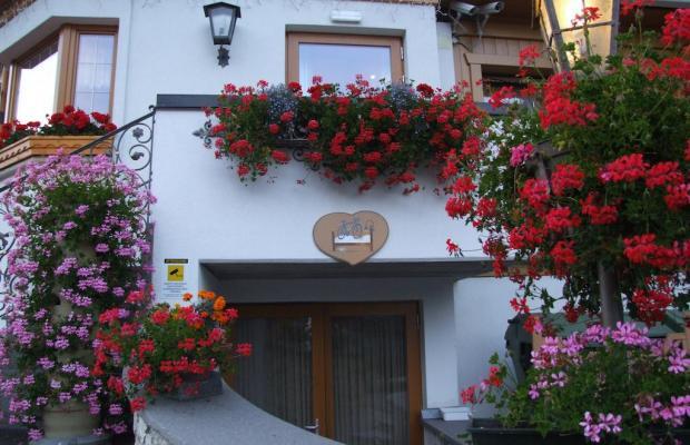 фотографии отеля Olympia  изображение №15