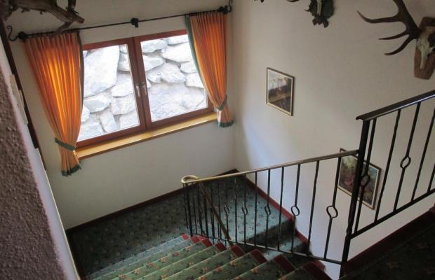 фотографии отеля Pension Jaegerhof изображение №11