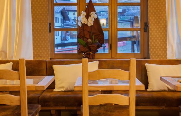фотографии отеля Stella Alpina изображение №15