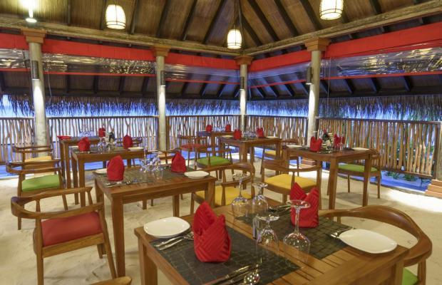фотографии отеля Dhigufaru Island Resort изображение №19