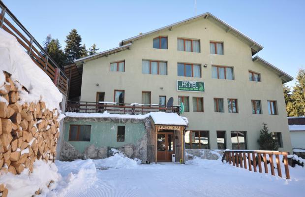 фото отеля Forest Star (ex. Gorska Zvezda) изображение №1