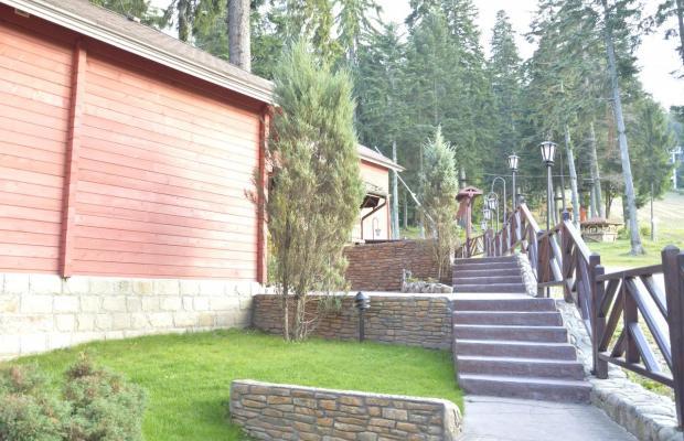 фотографии Альпин (Alpin) изображение №16