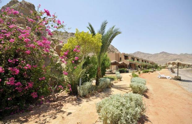фотографии Helnan Taba Bay (ex. Salah El Dien Taba Beach Resort; Charm Life Island View Taba) изображение №4