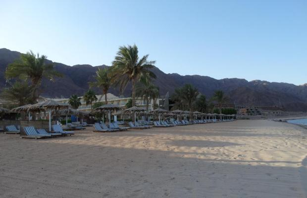 фото отеля La Playa Beach Resort Taba (ex. Sol Taba Red Sea; Sonesta Beach Resort Taba) изображение №17