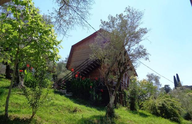 фото Villa Oliva (Вилла Олива) изображение №2