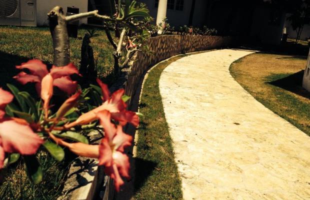 фотографии отеля Cordova Reef Village Resort изображение №19