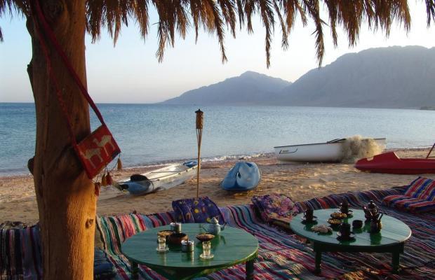 фото отеля Saydeen Village Red Sea Riviera изображение №17
