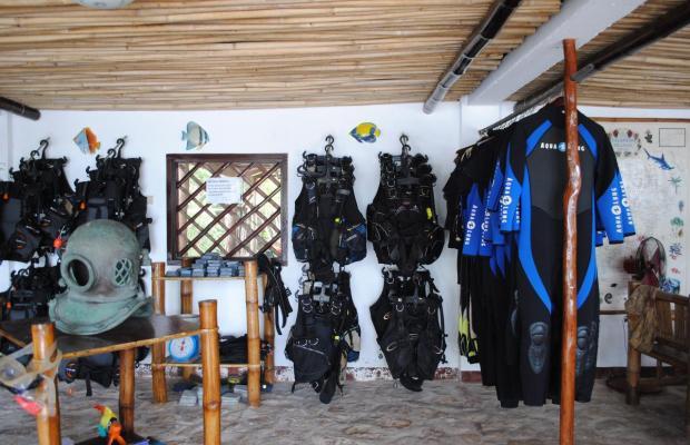 фотографии Coral Bay Beach and Dive Resort изображение №32
