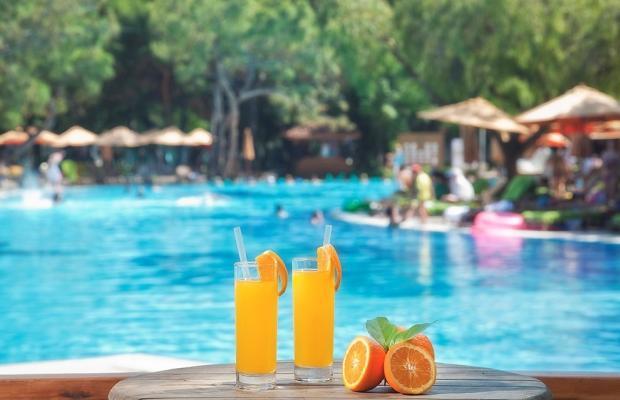 фотографии Akka Antedon (ex. Akka Hotels Antedon Garden; Akka Hotels Antedon De Luxe) изображение №36