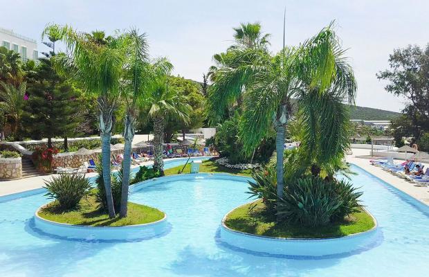 фото Bodrum Holiday Resort & Spa (ex. Majesty Club Hotel Belizia) изображение №26