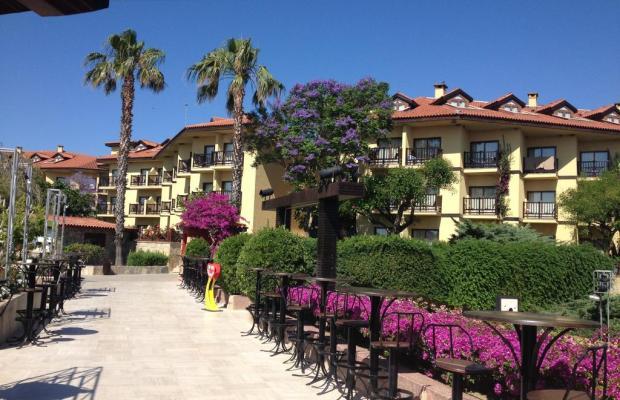 фотографии отеля Alba Resort изображение №19