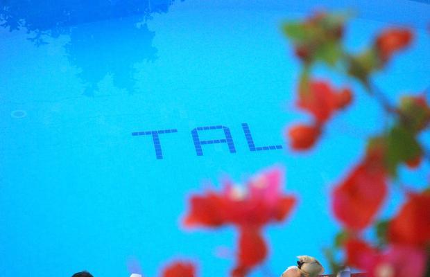 фото отеля Tal изображение №5