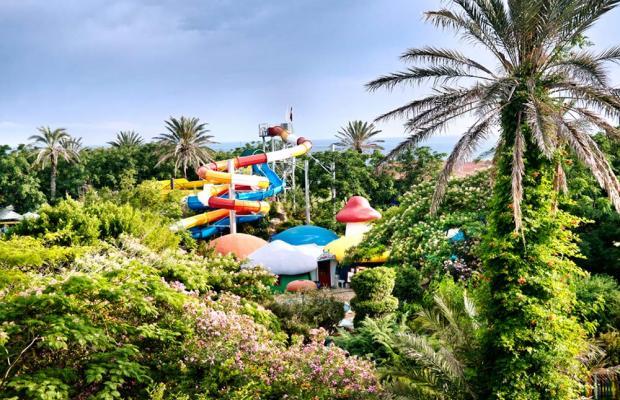 фотографии Belconti Resort изображение №56